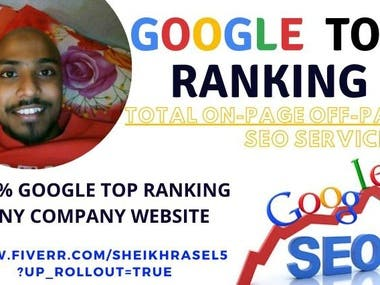 I will provide Google white hat SEO your Website Ranking