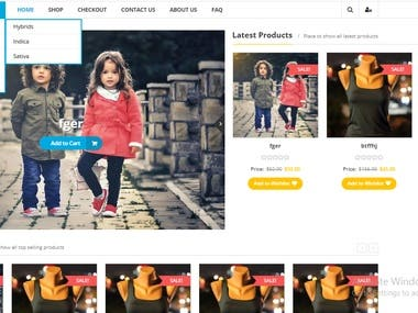 Online shop creation and customize