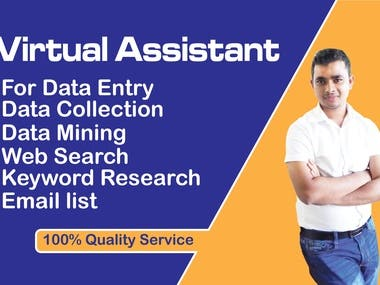 Virtual Assistant/ data entry.