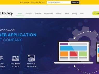 Web development portal