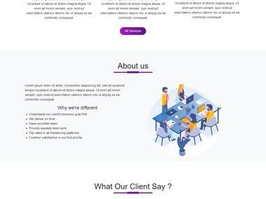 Startup Website Page