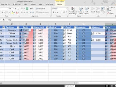 Data Entry in excel format