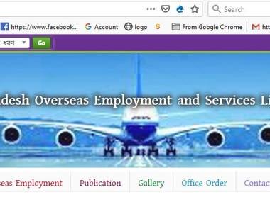 Government Website Management.