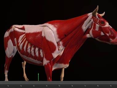 3D MODELING REEL
