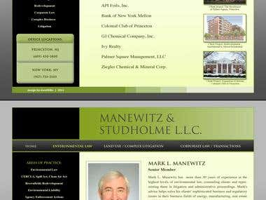 Web Design - Manewitz