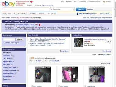eBay Amazon Expert