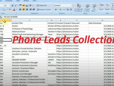 Phone Leads Collection for Buyer