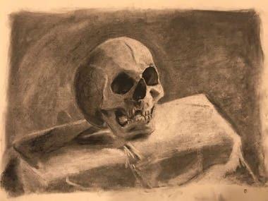 Skull Charcoal Drawing