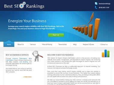 SEO Services website