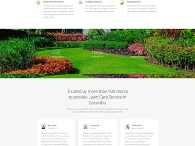 Website for Palmetto Pro