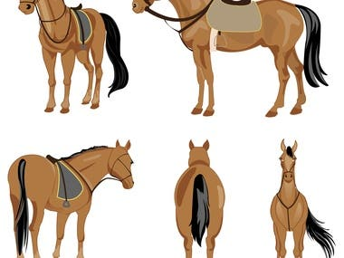 Artwork of horse in different postures