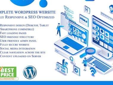 I will design a professional wordpress website or web design