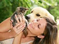 Pets; Love Them!