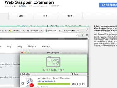 WebSnapper Chrome extension