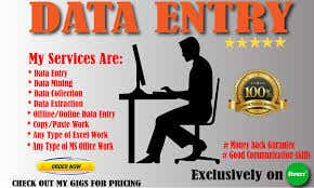 I will do any type of data entry work .