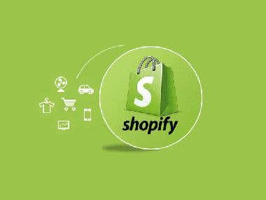 Shopify Store Management