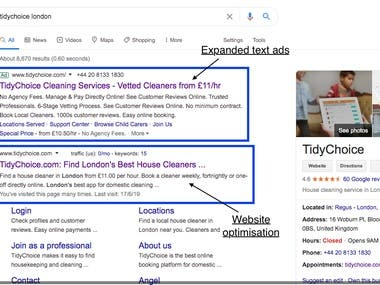 PPC expanded text ads + Website Optimisation