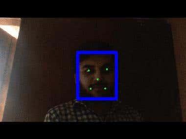 Face & Landmarks Detection