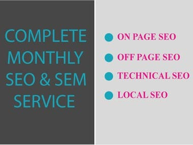 I WILL PROVIDE COMPLETE MONTHLY SEO SERVICE