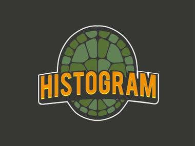 HISTOGRAM LOGO- MISSING SOME DETAILS