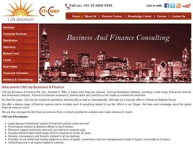Citicorp Business & Finance