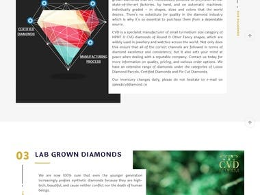 Develop Diamond company website