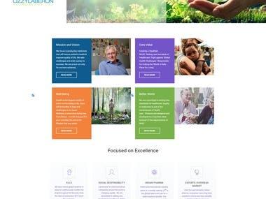 Simple Heath care Website.