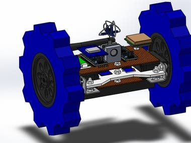 Satellite/Rover Project
