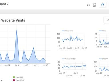 Google Search Performance of the Website