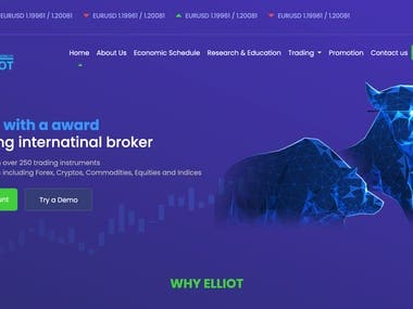 Web for Trading Co.