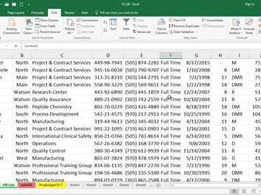 Data Entry with Excel