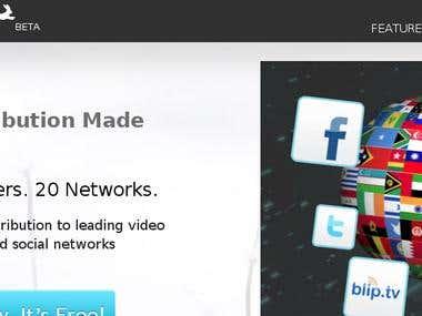 Video distribution system
