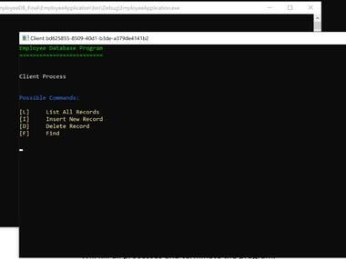 Development of an entire database from scratch