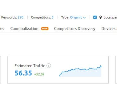 Search Engine Optimisation results