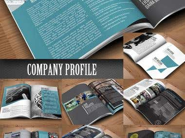 TUSDEC Company Profile