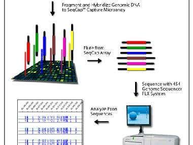Genetics-Microarray, next genetation sequencing