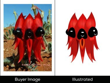 Image to Vector Illustration