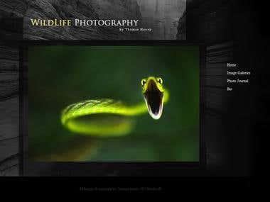 thany.com - A photographer's website