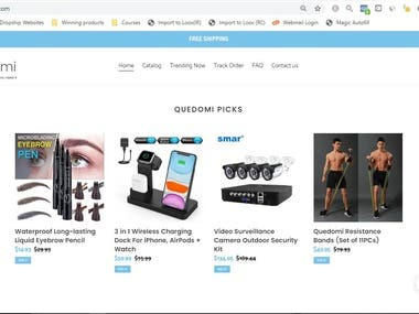General Product Shopify Dropshiping store designed by me