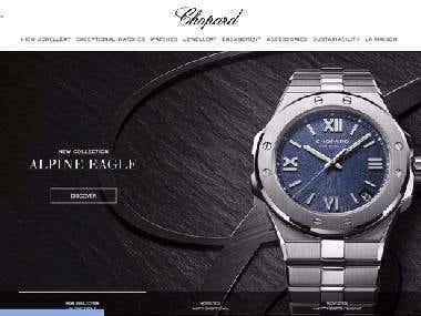 Company Branding Website