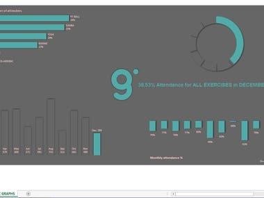 Dynamic Charts/ Graphs (Portfolio)