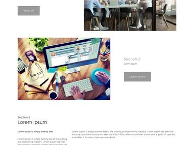 Buisnss website template custom