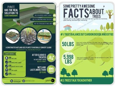 Nature Infographic