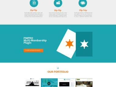 Website Design for FlipSites