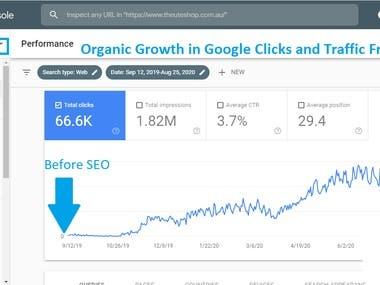 Organic Google Traffic & Clicks