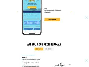 WordPress Website Design by Custom Section