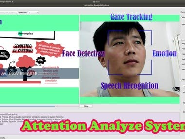 Analyze Attention System