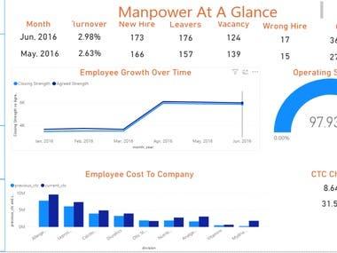 Manpower At A Glance - HR Evolution