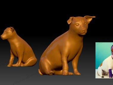 Toy, animal design
