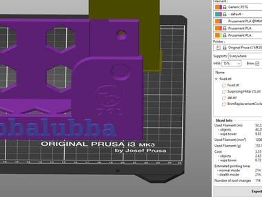 Custom 3D Print